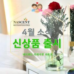 네이센트 4월 신상품 출시
